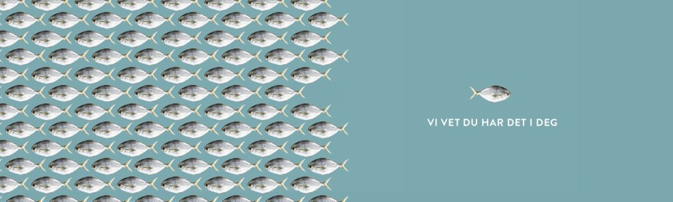 ergo-ego-fisker